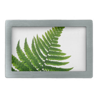 Green Fern prints Woodlands Leaf Belt Buckle