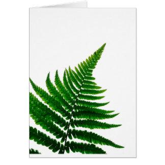 Green Fern prints Woodlands Leaf Card