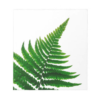 Green Fern prints Woodlands Leaf Notepad