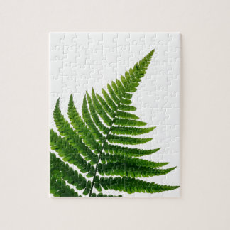Green Fern prints Woodlands Leaf Puzzle
