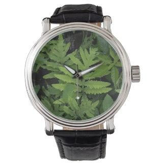 Green Fern Watch