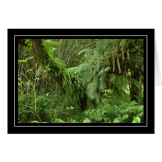 Green Ferns and Palm Trees Blank Card