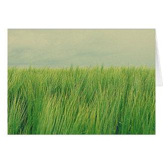 Green field card