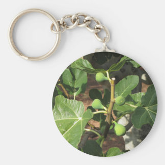Green figs ripening on a fig tree basic round button keychain