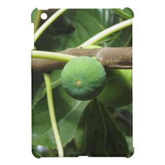 Green figs ripening on a fig tree iPad mini cases