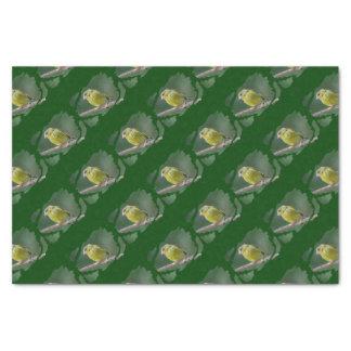 Green Finch - green finch - Verdier photo JL Tissue Paper