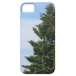 Green fir tree against a clear sky iPhone 5 case