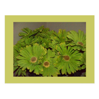 Green Flower Power Postcard