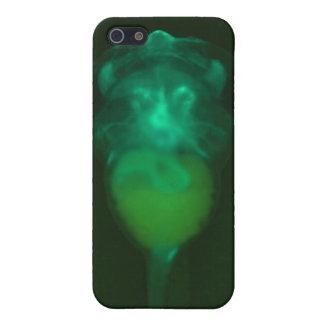 Green Fluorescent Tadpole iPhone 4 Speck Case Cover For iPhone 5/5S