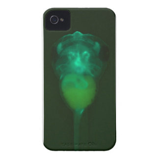 Green Fluorescent Tadpole iPhone  Case iPhone 4 Cover