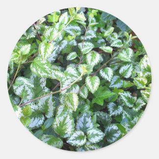 Green Foliage | Leaves | Plants Sticker