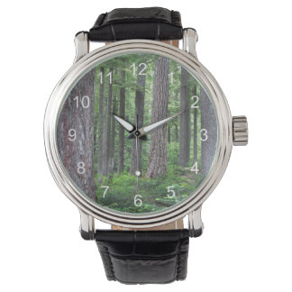 Green Forest Nature Photo Watch