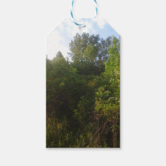Green Friends Pack Of Gift Tags