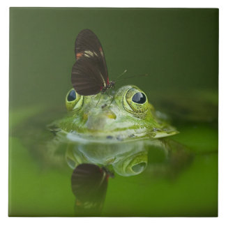 Green Frog and Butterfly Tile