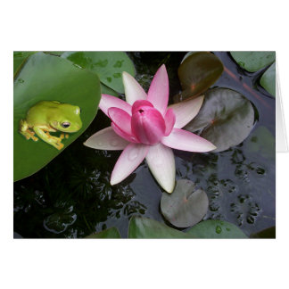 Green frog and pink lilly card