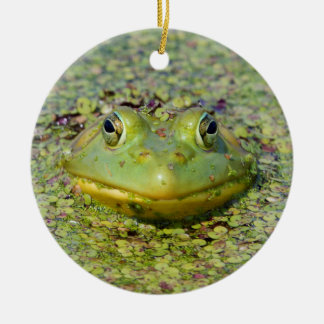 Green frog in duckweed, Canada Round Ceramic Ornament
