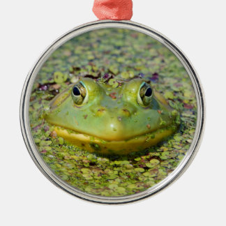 Green frog in duckweed, Canada Silver-Colored Round Ornament