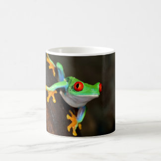 Green Frog Nature Wildlife Mug