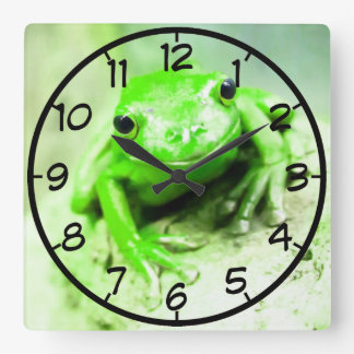 green frog square wall clock