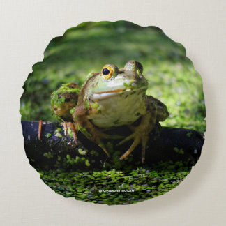 Green Frog Strikes a Pose on the Hose Round Pillow