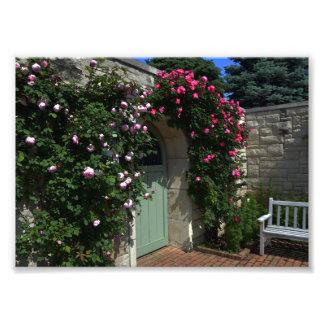 Green Garden Gate Door With Bench Photo Print