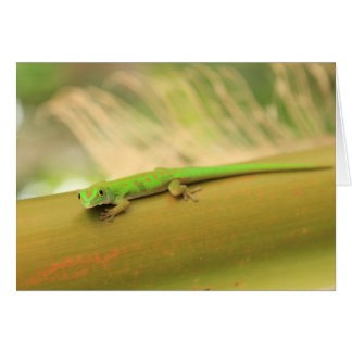 Green Gecco Note Card