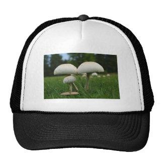 Green Gill Mushroom Trucker Hat