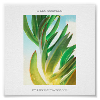 Green Goodness Succulent Plant Aloe Poster