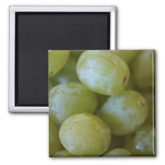 Green Grapes Refrigerator Magnets