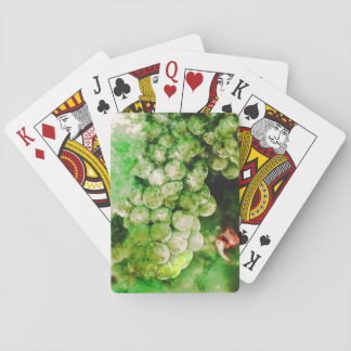 Green Grapes Used to Make Wine Poker Deck