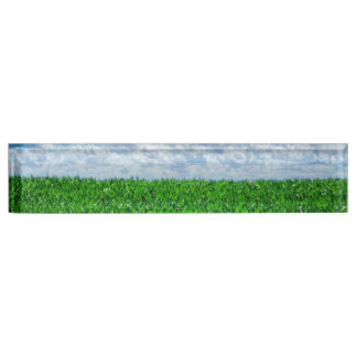 Green grass and blue sky nameplate