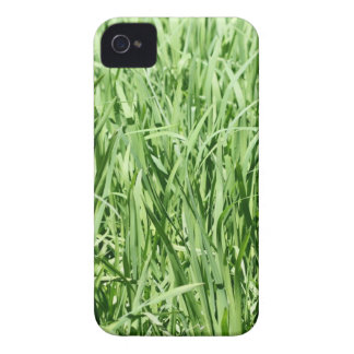 Green Grass iPhone 4 Case-Mate Cases