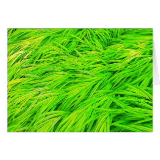 Green Grass Note Card