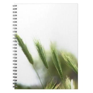 Green grass notebook