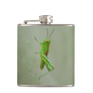Green Grasshopper Flasks
