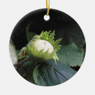 Green hazelnut on the tree in a garden in Tuscany, Round Ceramic Ornament