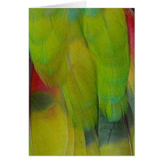 Green Headed Parrot Vertical Card