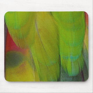 Green Headed Parrot Vertical Mouse Pad