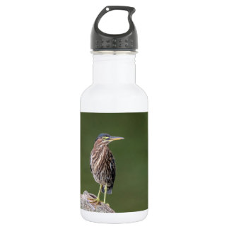 Green Heron on a log 532 Ml Water Bottle