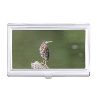 Green Heron on a log Business Card Holder
