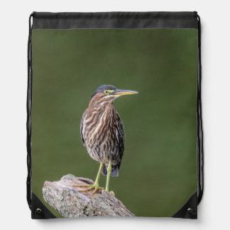 Green Heron on a log Drawstring Bag