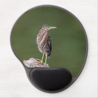 Green Heron on a log Gel Mouse Pad