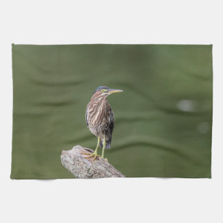 Green Heron on a log Kitchen Towel