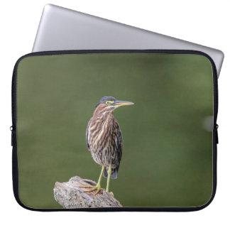 Green Heron on a log Laptop Sleeve