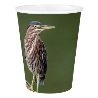 Green Heron on a log Paper Cup