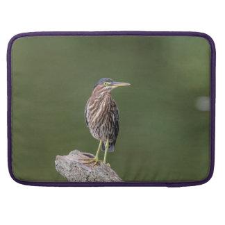Green Heron on a log Sleeve For MacBooks
