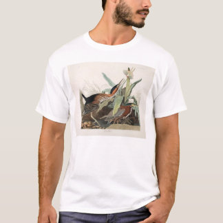 Green Heron T-Shirt