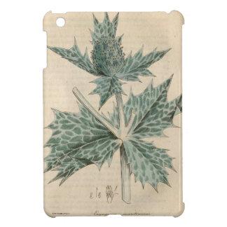 Green Holly iPad Mini Cases