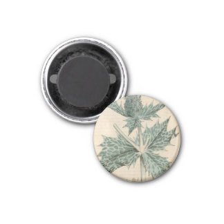 Green Holly Magnet