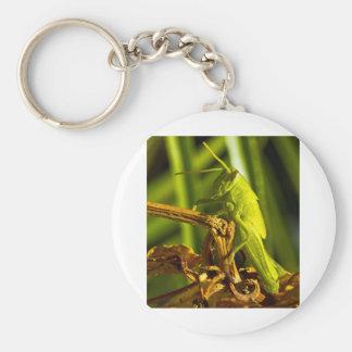 Green Hopper Keychain